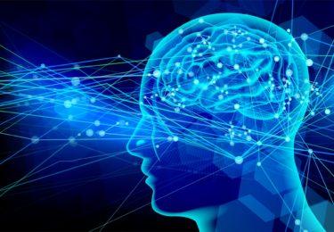 脳の研究からわかった、選手を伸ばす指導法~イメージを用いて~